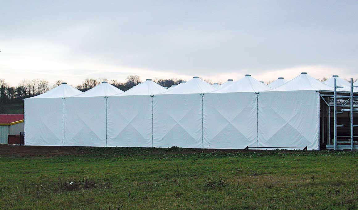 Brass bedouin tents with wall covering
